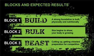 Body Beast Workout Phases